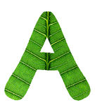 Зеленый алфавит текстуры лист Стоковое Фото