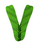 Зеленый алфавит текстуры лист Стоковые Фото