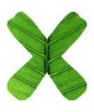 Зеленый алфавит текстуры лист Стоковые Изображения RF