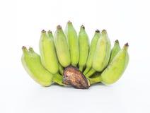 Зеленый банан на белой предпосылке Стоковое Фото