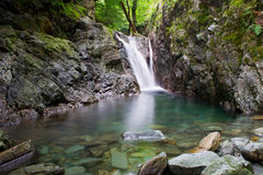 Зеленый бассейн Стоковое Фото