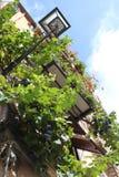 Зеленый балкон в Bosa Стоковое Изображение