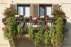 Зеленый балкон Стоковое Изображение RF
