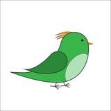 Зеленый вектор птицы Стоковая Фотография RF