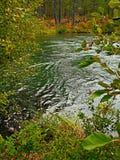 Зеленый вихрь Стоковые Изображения
