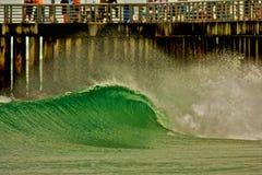 Зеленый вход Стоковая Фотография RF