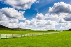 Зеленый выгон с белой загородкой Стоковые Фотографии RF