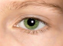 Зеленый глаз маленькой девочки Стоковые Фото