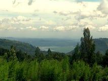 Зеленый лес и голубой горизонт Стоковое фото RF