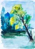 Зеленый лес, картина акварели Стоковая Фотография RF