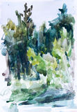 Зеленый лес, картина акварели Стоковое Фото