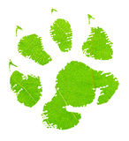 Зеленый животный след ноги стоковая фотография rf