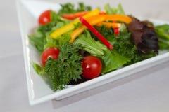 зеленый здоровый салат Стоковые Фотографии RF