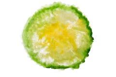 Зеленый и желтый конспект акварели Стоковое Изображение RF