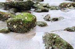 Зеленый каменный Koh Chang Таиланд Стоковое Изображение RF