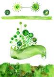 Зеленый комплект вектора акварели, знамя с флористической темой, зелеными элементами вектора акварели Стоковое Фото
