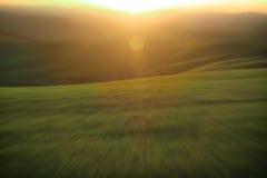 Зеленый конспект луга и солнечного света Стоковая Фотография RF