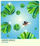 зеленый космос Стоковая Фотография RF