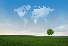 зеленый мир Стоковые Фотографии RF