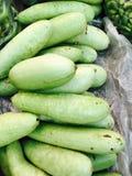 зеленый овощ Стоковая Фотография