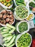 зеленый овощ Стоковое Фото