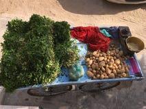 зеленый овощ Стоковые Фотографии RF
