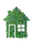 Зеленый дом Стоковые Фото