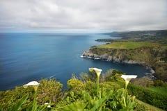 зеленый остров изумительный взгляд накидки и Атлантического океана Стоковые Изображения