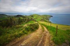зеленый остров изумительный взгляд накидки, старой дороги и Атлантического океана Стоковое Изображение RF