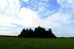 Зеленый остров 91 Стоковое Фото