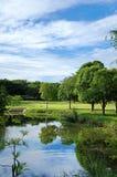 Зеленый парк в городе Стоковая Фотография RF