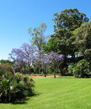 Зеленый парк города для остатков Rosedal Puerto Madero на сумраке Стоковые Фотографии RF