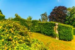 Зеленый парк, свеже отрезанная вегетация, хорошо поддерживаемый парк, walkin Стоковые Изображения RF