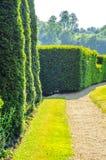 Зеленый парк, свеже отрезанная вегетация, хорошо поддерживаемый парк, walkin Стоковые Фотографии RF