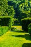 Зеленый парк, свеже отрезанная вегетация, хорошо поддерживаемый парк, walkin Стоковая Фотография