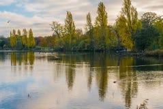 Зеленый парк стоковое изображение rf