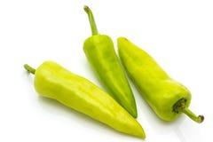 Зеленый перец Стоковое Фото