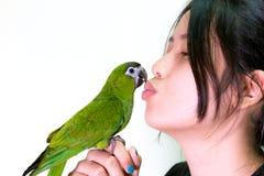 Зеленый поцелуй любимчика птицы ары к женщине Стоковое фото RF