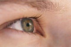 Зеленый предназначенный для подростков взгляд со стороны крупного плана глаза девушки Стоковые Фото