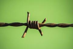 Зеленый провод Стоковые Фото
