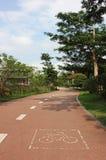 Зеленый путь Стоковая Фотография RF