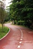 Зеленый путь Стоковое Изображение
