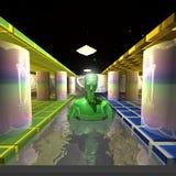 Зеленый плавать чужеземца Стоковое фото RF