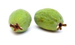 Зеленый плодоовощ feijoa Стоковое Изображение
