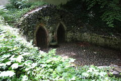 Зеленый плющ и каменная стена 7913 Стоковые Фото