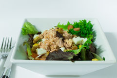 Зеленый салат в шаре с белой предпосылкой Стоковая Фотография