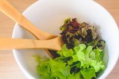 Зеленый салат в шаре фарфора Стоковые Изображения RF
