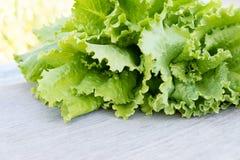 зеленый салат листьев Листья салата на деревянной предпосылке Свежий салат на кухонном столе органическое еды здоровое Стоковые Фотографии RF