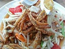 Зеленый салат папапайи Стоковые Фотографии RF