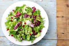 Зеленый салат с семенами шпината, frisee, arugula, radicchio и гранатового дерева на голубой деревянной предпосылке Стоковые Фотографии RF